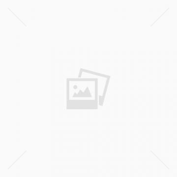 מיני סייט + מערכת דיוור משלך!